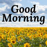 Good Morning Images & Messages for Dp And Status on APKTom