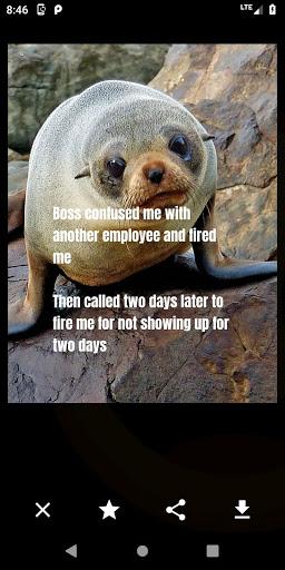 Funny Laughs LOL! - Daily Pics, Memes, and Jokes 3 تصوير الشاشة