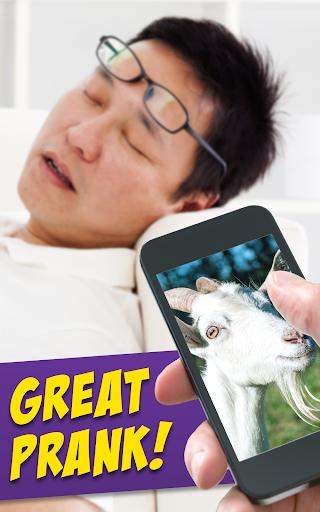 Screaming Goat Air Horn - Funny Prank App screenshot 4
