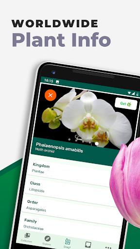 PlantSnap - FREE plant identifier app screenshot 9