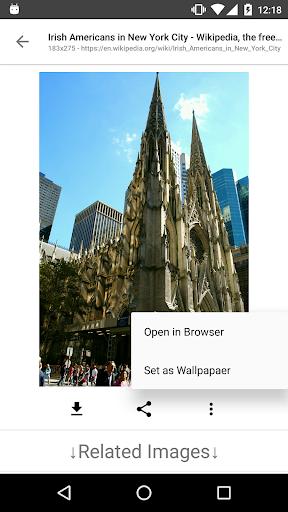 Image Search - ImageSearchMan screenshot 4