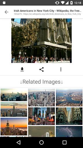 Image Search - ImageSearchMan screenshot 5
