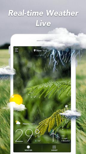 توقعات الطقس والحاجيات والرادار 1 تصوير الشاشة