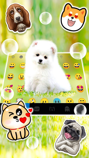 Cute White Puppy Keyboard Background screenshot 3