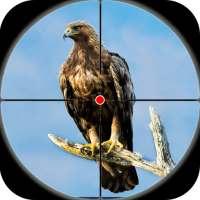 Desert Birds Sniper Shooter - Bird Hunting 2021 on 9Apps