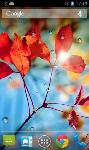 Rains Live Wallpaper 1 تصوير الشاشة