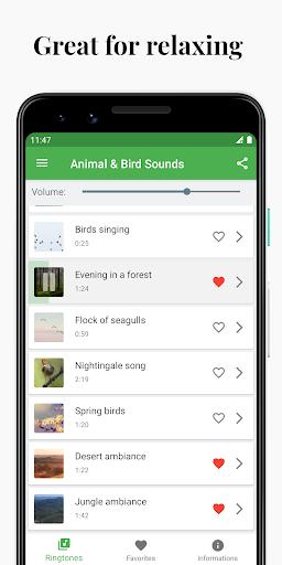 Bird and Animal soundboard screenshot 2