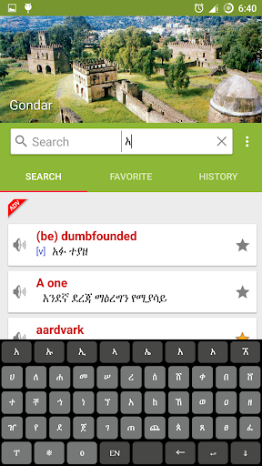 Amharic Dictionary - Translate Ethiopia screenshot 6