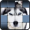 Hidden Pics icon