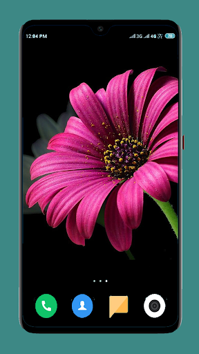 Flowers Wallpaper 4K screenshot 4