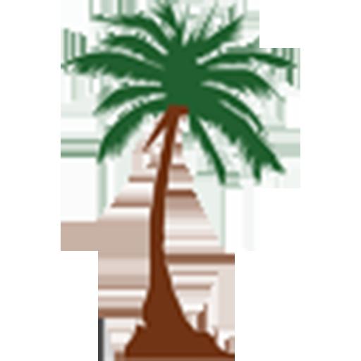 Abul Hasan Ali Nadwi icon