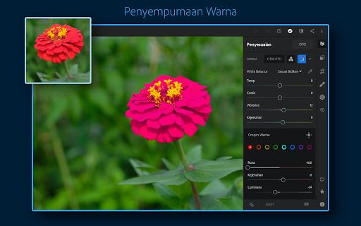 Adobe Lightroom - Editor Foto screenshot 11