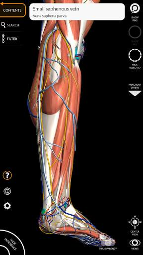 Anatomy 3D Atlas 10 تصوير الشاشة